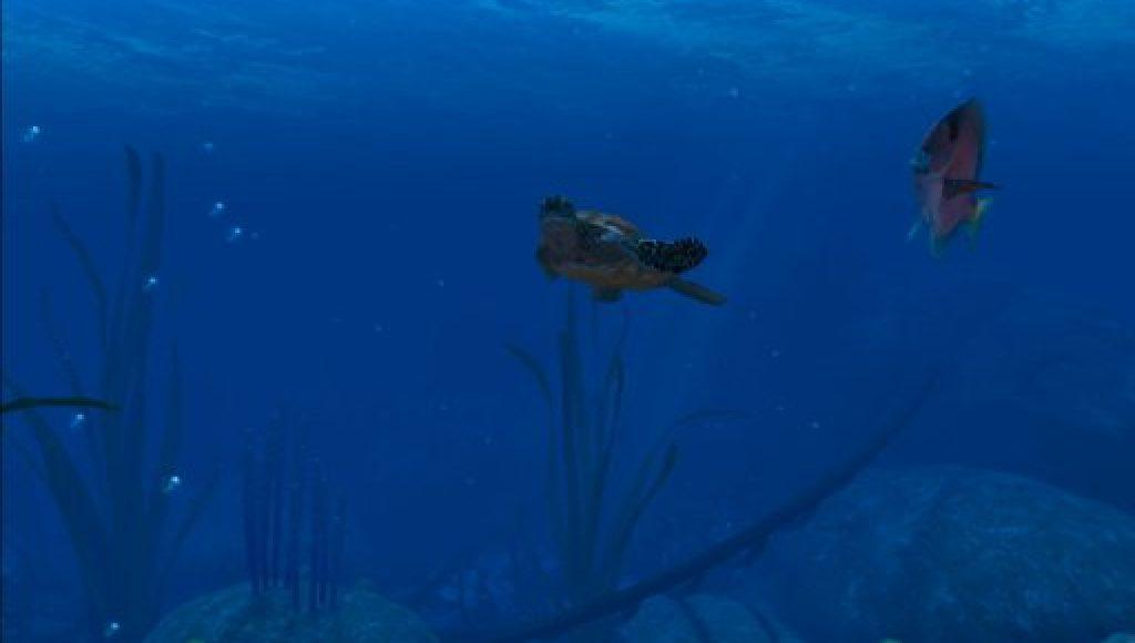Ocean Rift 2